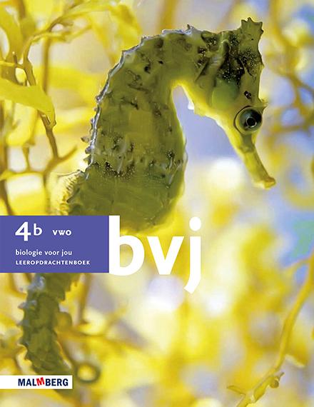 BVJ_4b